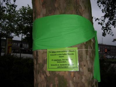 Operation Long Live GRÜNE schmücken bedrohte Bäume an der Mercatorstraße!