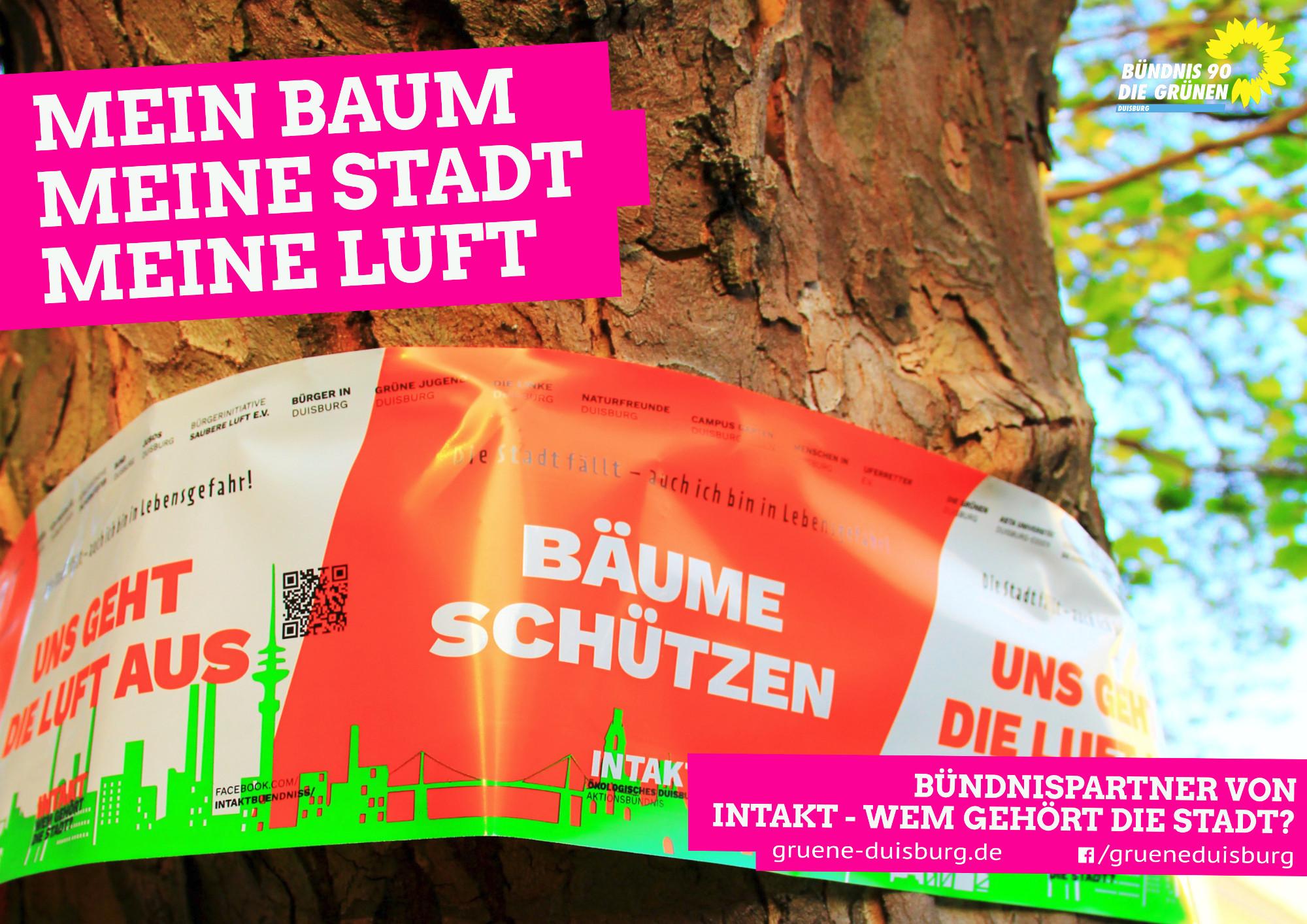 BaumStadtLuft